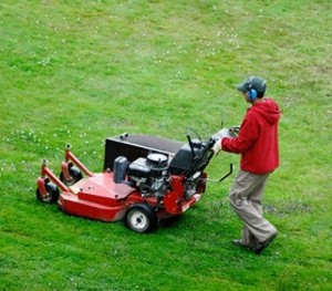 Top Cut Lawn Care
