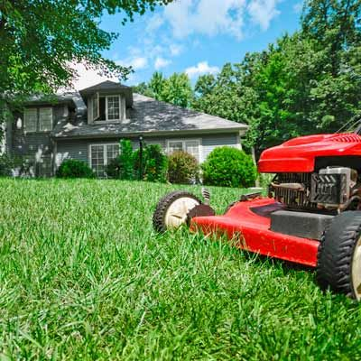 Super lawn care servicetop cut lawn care service for Garden care maintenance