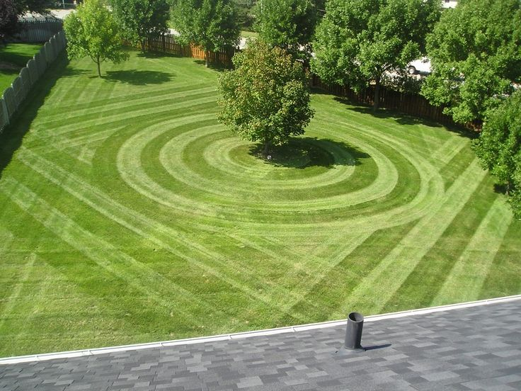Top cut lawn care servicetop cut lawn care service for Garden lawn maintenance